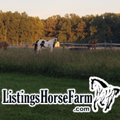 buy horse farm in Cincinnati cincy ohio equestrian farm horse stables riding realtor farm home sell house keller williams agent